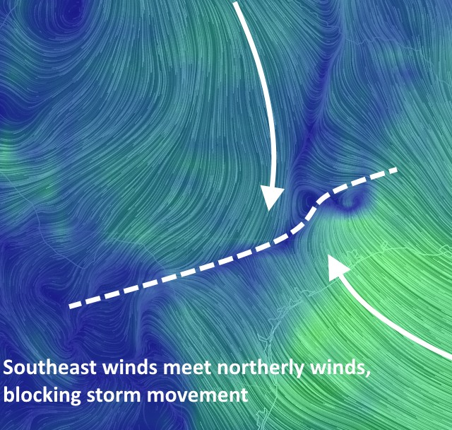 Surface wind depiction from the GFS model this morning. (earth.nullschool.net)