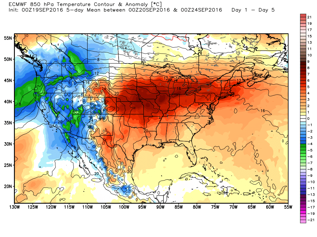 Heat will dominated over the central and eastern United States this week, and Texas is no exception. (Weather Bell)